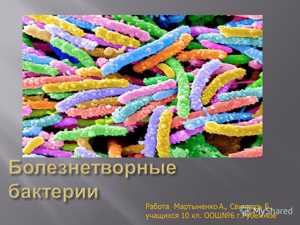 Работа Мартыненко А., Свичкарь Е., учащихся 10 кл. ООШ6 г.Рубежное
