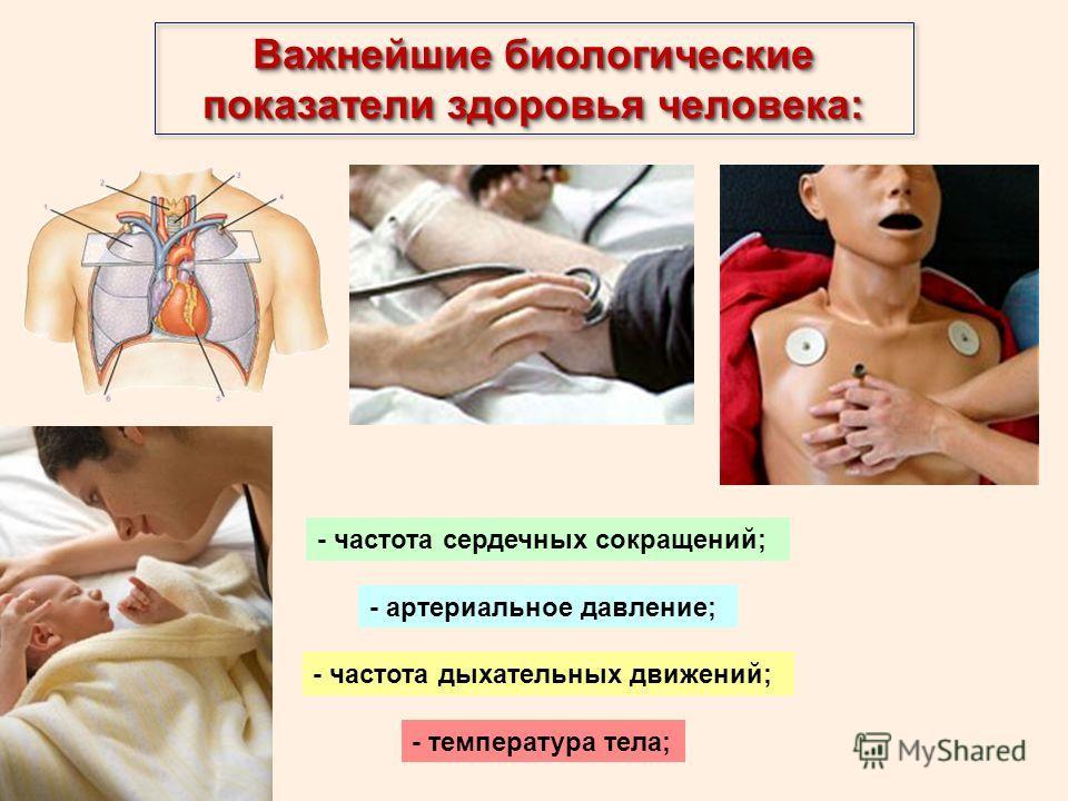 Важнейшие биологические показатели здоровья человека: - частота сердечных сокращений; - артериальное давление; - частота дыхательных движений; - температура тела;