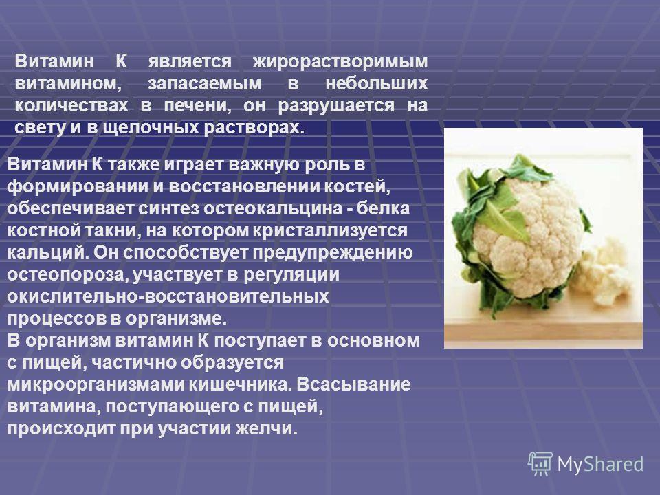 Витамин К является жирорастворимым витамином, запасаемым в небольших количествах в печени, он разрушается на свету и в щелочных растворах. Витамин К также играет важную роль в формировании и восстановлении костей, обеспечивает синтез остеокальцина -