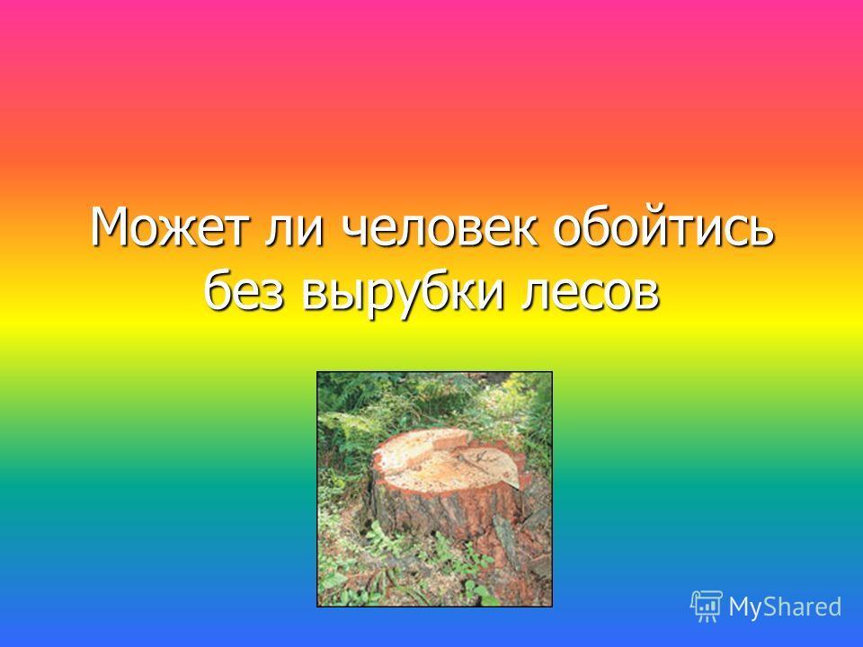Может ли человек обойтись без вырубки лесов