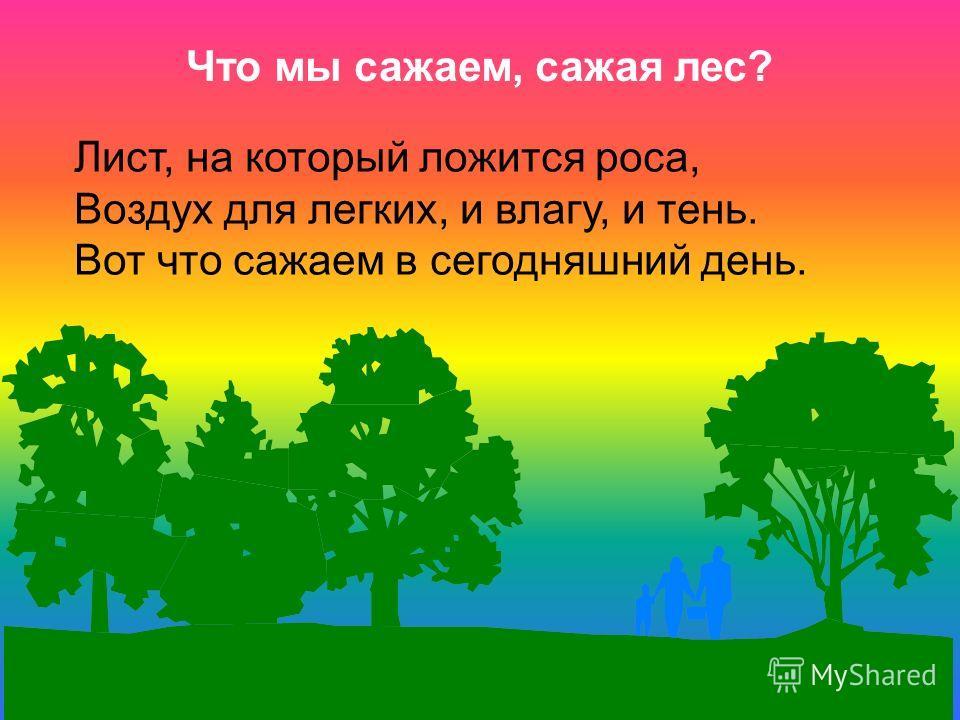 Что мы сажаем, сажая лес? Лист, на который ложится роса, Воздух для легких, и влагу, и тень. Вот что сажаем в сегодняшний день.