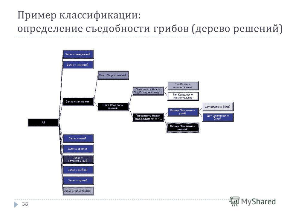 Пример классификации : определение съедобности грибов ( дерево решений ) 38