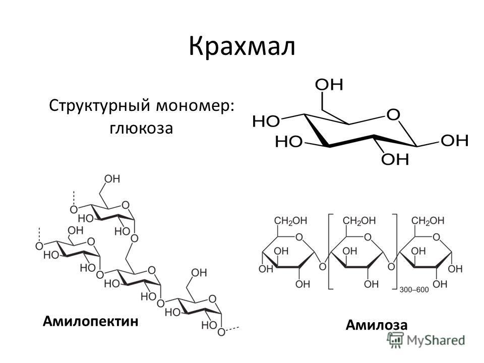 Крахмал Амилоза Амилопектин Структурный мономер: глюкоза