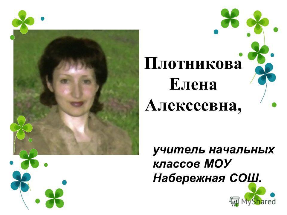 Никитин Валентин Сергеевич, учитель физики и математики МОУ Карганская СОШ.