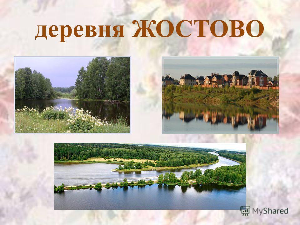 деревня ЖОСТОВО