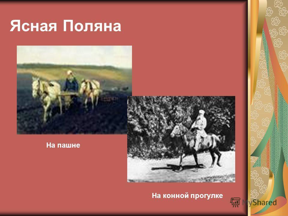 Ясная Поляна На конной прогулке На пашне
