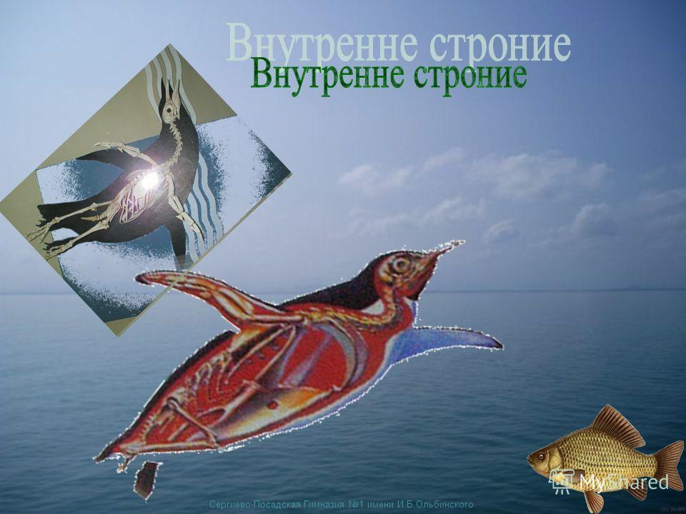 Сергиево-Посадская Гимназия 1 имени И.Б.Ольбинского
