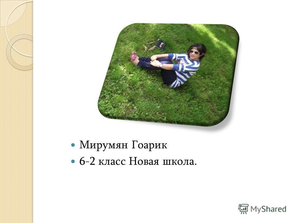 Мирумян Гоарик 6-2 класс Новая школа.