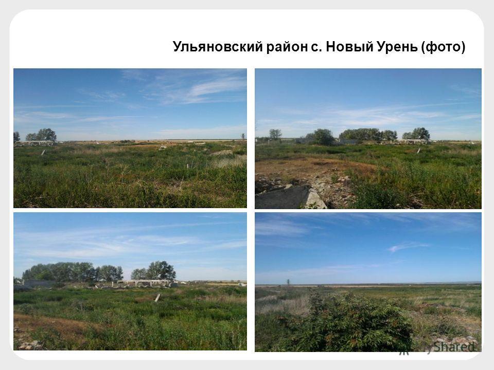 Ульяновский район с. Новый Урень (фото)