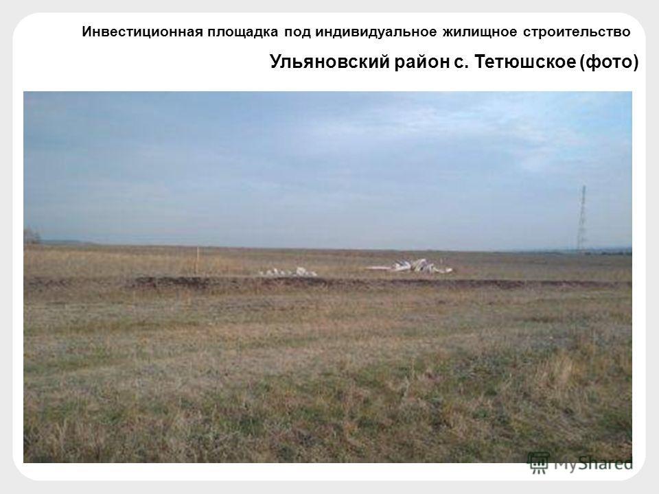 Ульяновский район с. Тетюшское (фото) Инвестиционная площадка под индивидуальное жилищное строительство