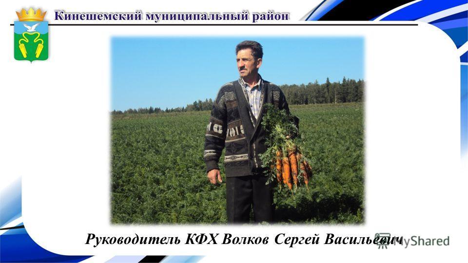 Руководитель КФХ Волков Сергей Васильевич