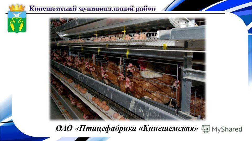 ОАО «Птицефабрика «Кинешемская»