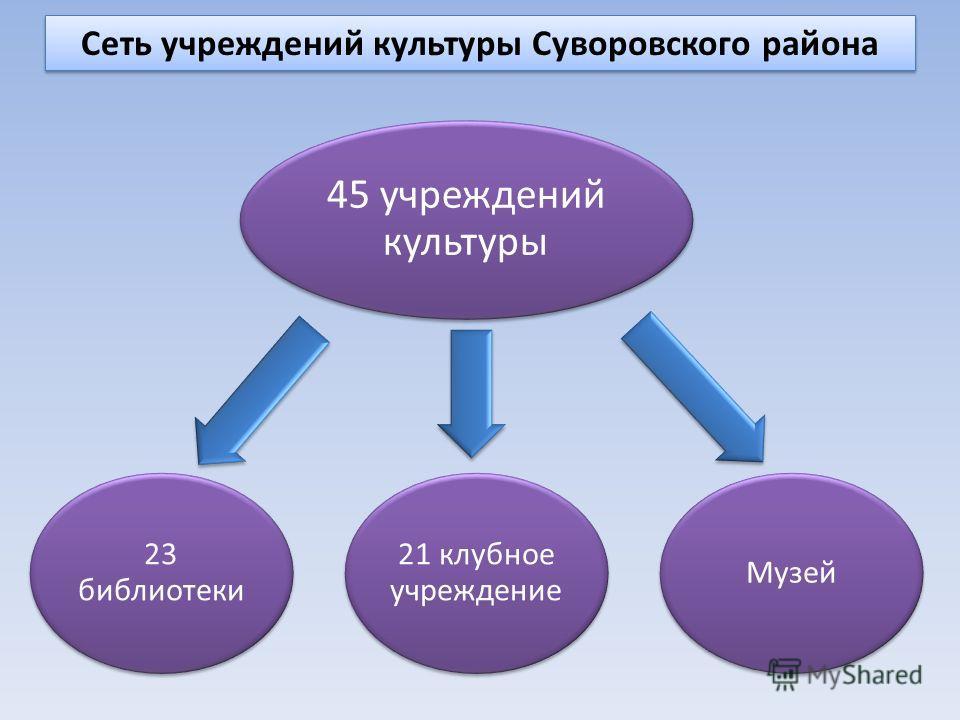 Сеть учреждений культуры Суворовского района 45 учреждений культуры 21 клубное учреждение Музей 23 библиотеки