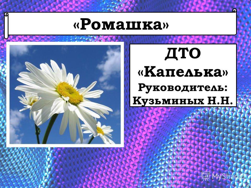 «Ромашка» ДТО «Капелька» Руководитель: Кузьминых Н.Н.