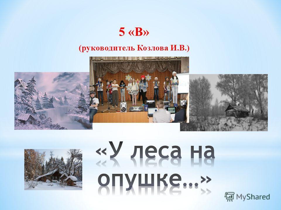 5 «В» (руководитель Козлова И.В.)