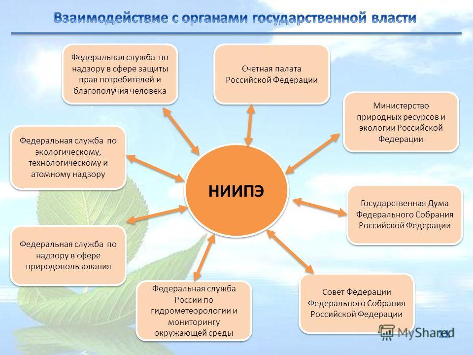 НИИПЭ Федеральная служба по надзору в сфере защиты прав потребителей и благополучия человека Федеральная служба по экологическому, технологическому и атомному надзору Федеральная служба по надзору в сфере природопользования Счетная палата Российской