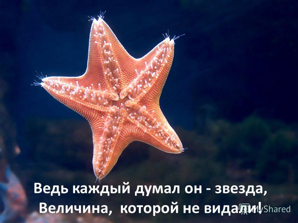 Ведь каждый думал он - звезда, Величина, которой не видали!