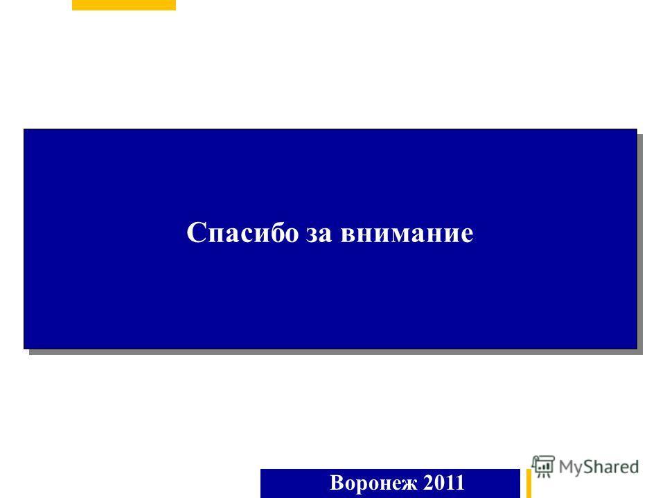 Спасибо за внимание Воронеж 2011