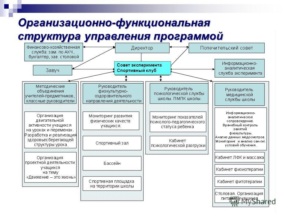 Организационно-функциональная структура управления программой Совет эксперимента Спортивный клуб