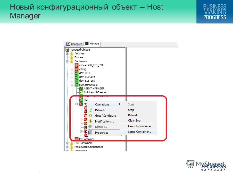 . Новый конфигурационный объект – Host Manager