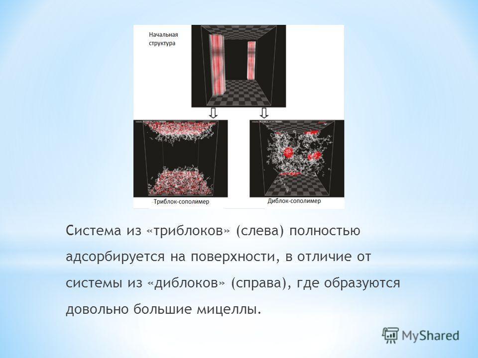 Система из «триблоков» (слева) полностью адсорбируется на поверхности, в отличие от системы из «диблоков» (справа), где образуются довольно большие мицеллы.