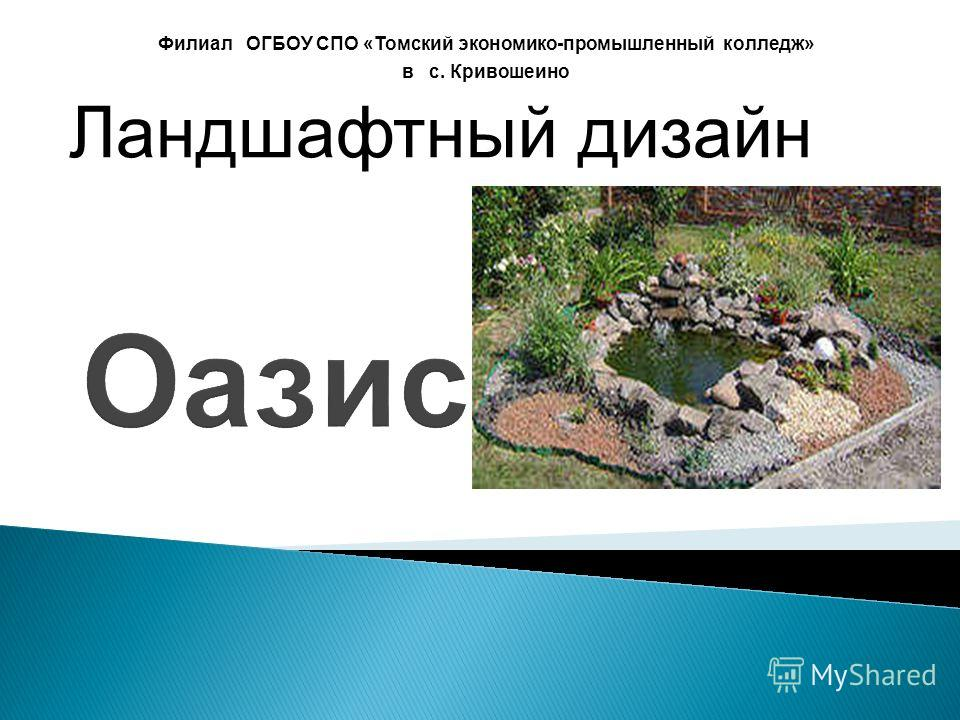Оазис Филиал ОГБОУ СПО «Томский экономико-промышленный колледж» в с. Кривошеино Ландшафтный дизайн