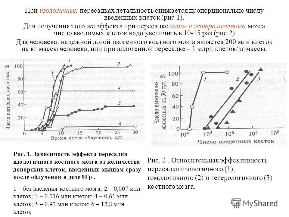 При изологичных пересадках летальность снижается пропорционально числу введенных клеток (рис 1). Для получения того же эффекта при пересадке гомо- и гетерологичного мозга число вводимых клеток надо увеличить в 10-15 раз (рис 2) Для человека Для челов