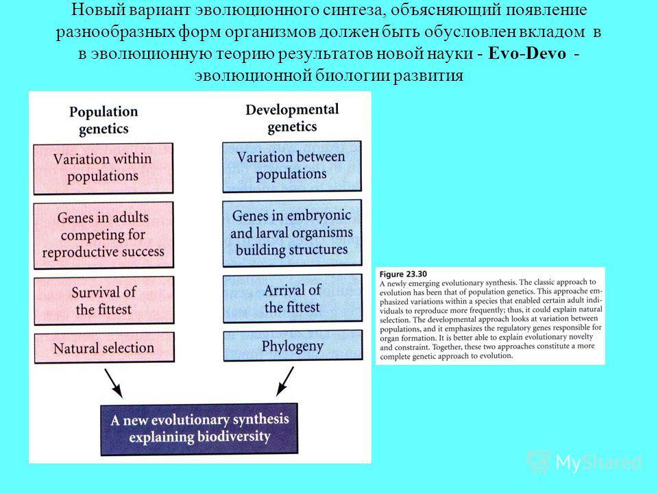 Новый вариант эволюционного синтеза, объясняющий появление разнообразных форм организмов должен быть обусловлен вкладом в в эволюционную теорию результатов новой науки - Evo-Devo - эволюционной биологии развития