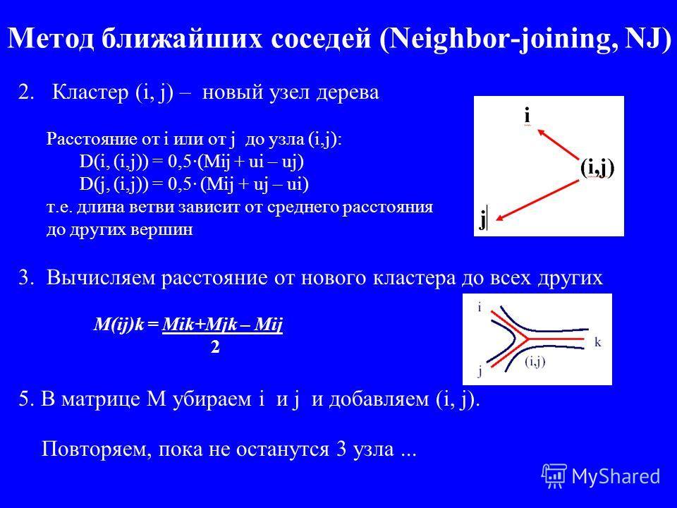 Метод ближайших соседей (Neighbor-joining, NJ) 2. Кластер (i, j) – новый узел дерева Расстояние от i или от j до узла (i,j): D(i, (i,j)) = 0,5·(Mij + ui – uj) D(j, (i,j)) = 0,5· (Mij + uj – ui) т.е. длина ветви зависит от среднего расстояния до други