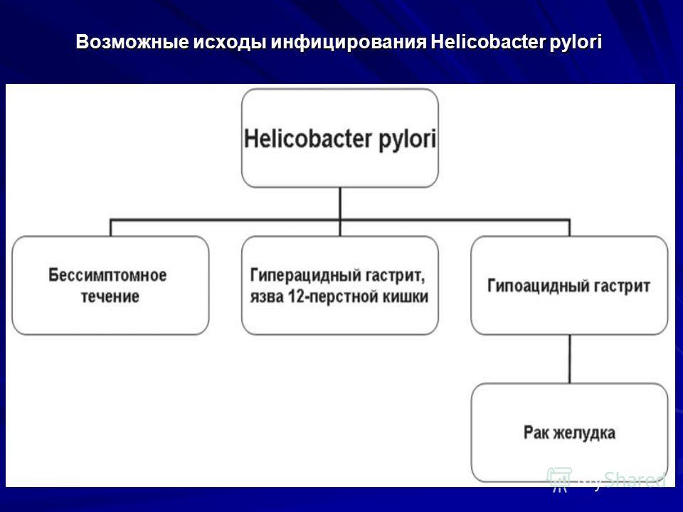 Возможные исходы инфицирования Helicobacter pylori