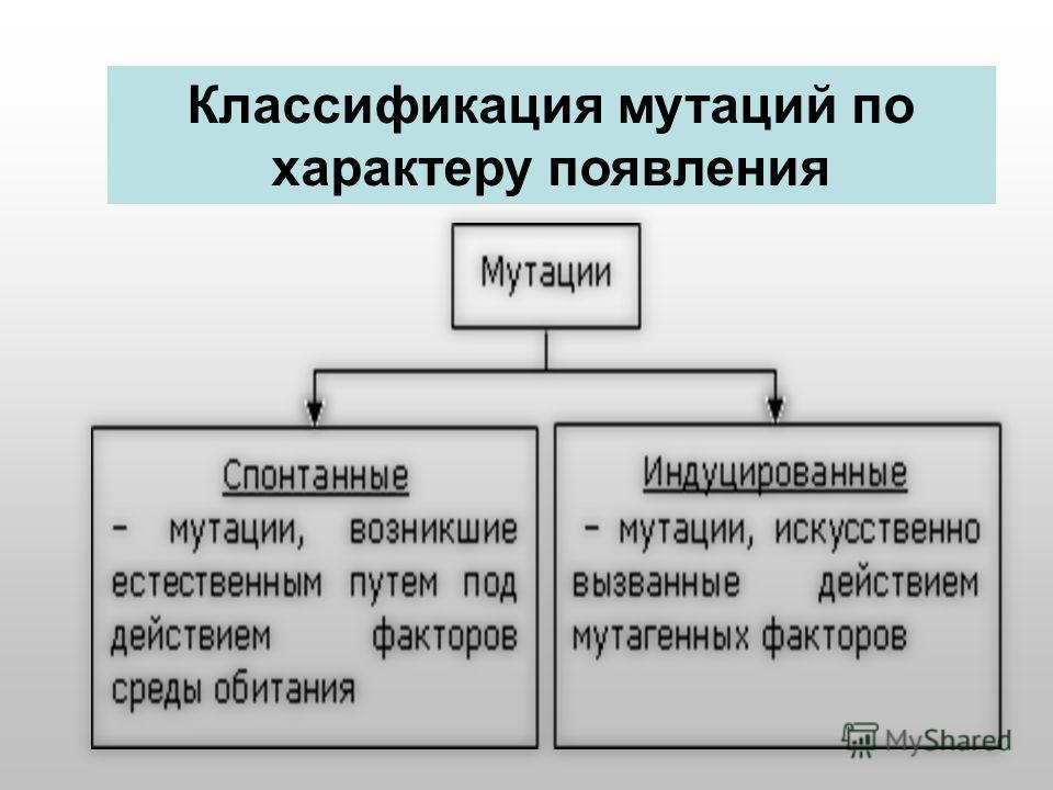 4. Генные мутации Классификация мутаций по характеру появления