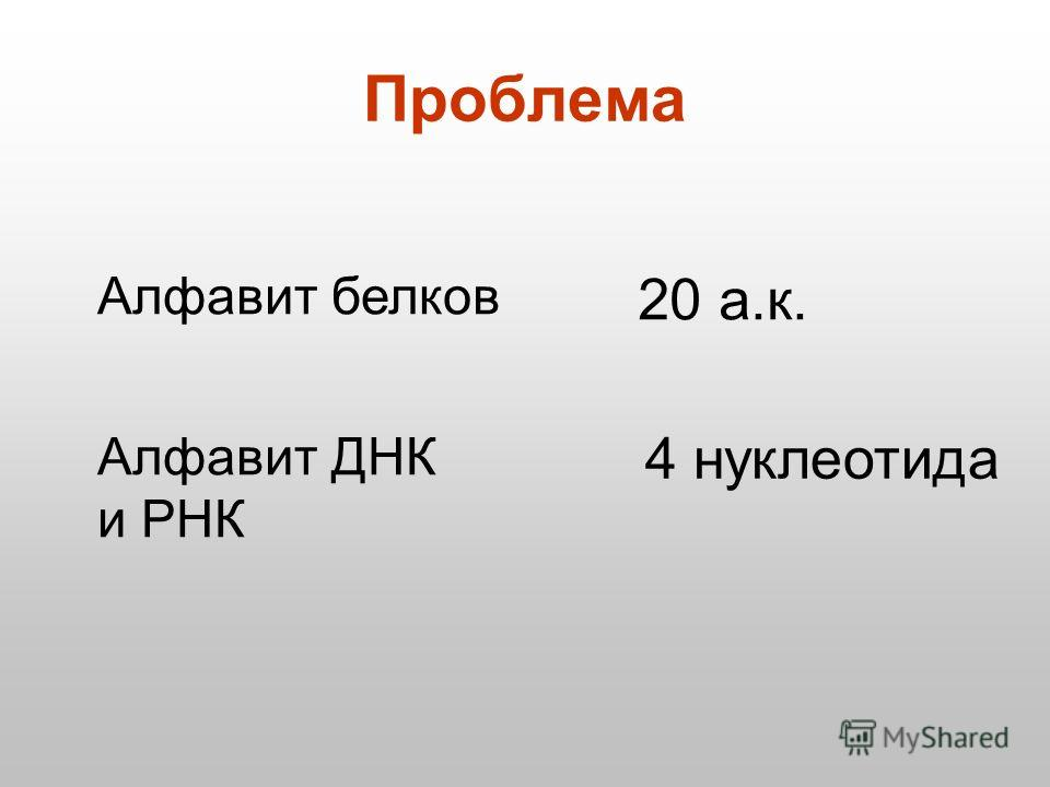 Проблема Алфавит белков 20 а.к. Алфавит ДНК и РНК 4 нуклеотида