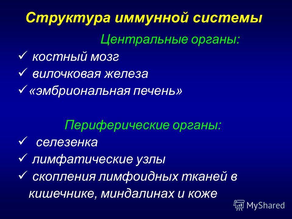 Статус Лимфатический фото