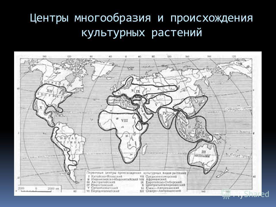 Центры многообразия и происхождения культурных растений