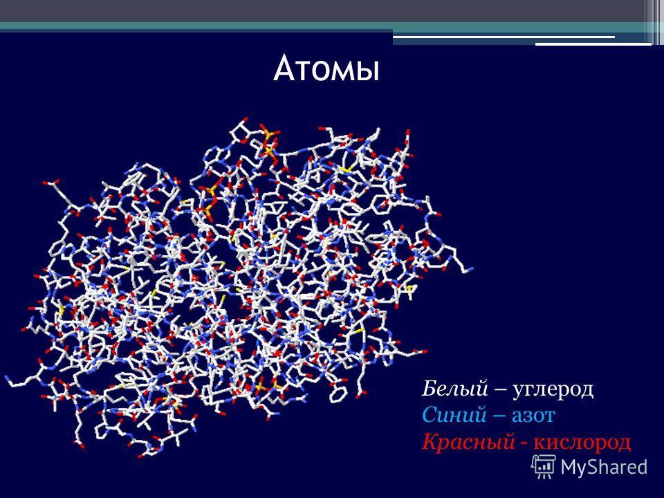 Атомы Белый – углерод Синий – азот Красный - кислород