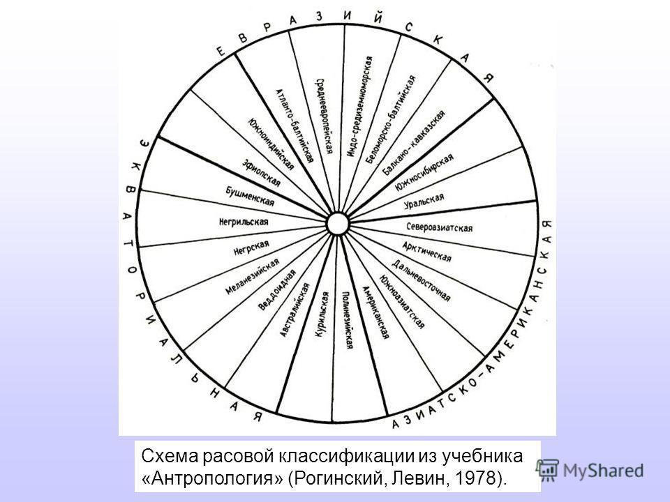 Схема расовой классификации из учебника «Антропология» (Рогинский, Левин, 1978).