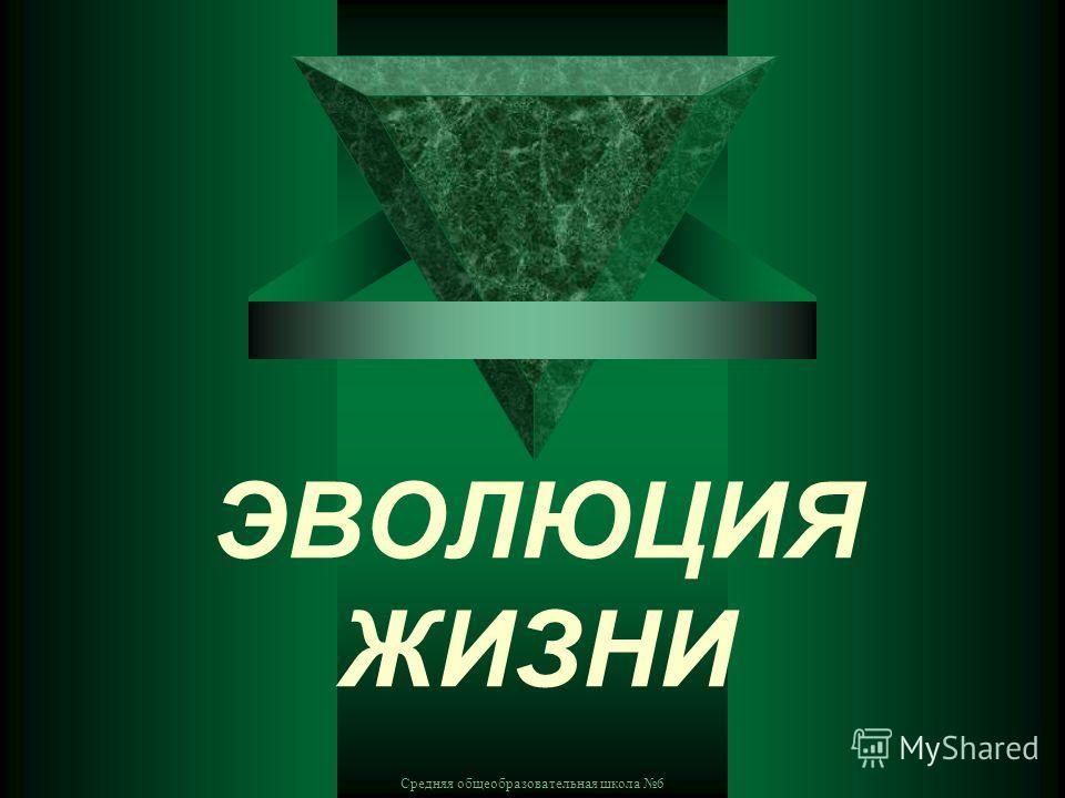 Средняя общеобразовательная школа 6 ЭВОЛЮЦИЯ ЖИЗНИ