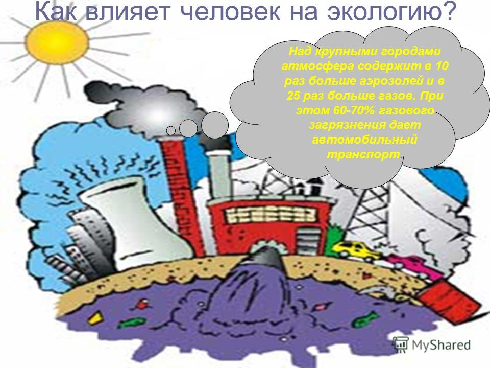 Как влияет человек на экологию? Над крупными городами атмосфера содержит в 10 раз больше аэрозолей и в 25 раз больше газов. При этом 60-70% газового загрязнения дает автомобильный транспорт.