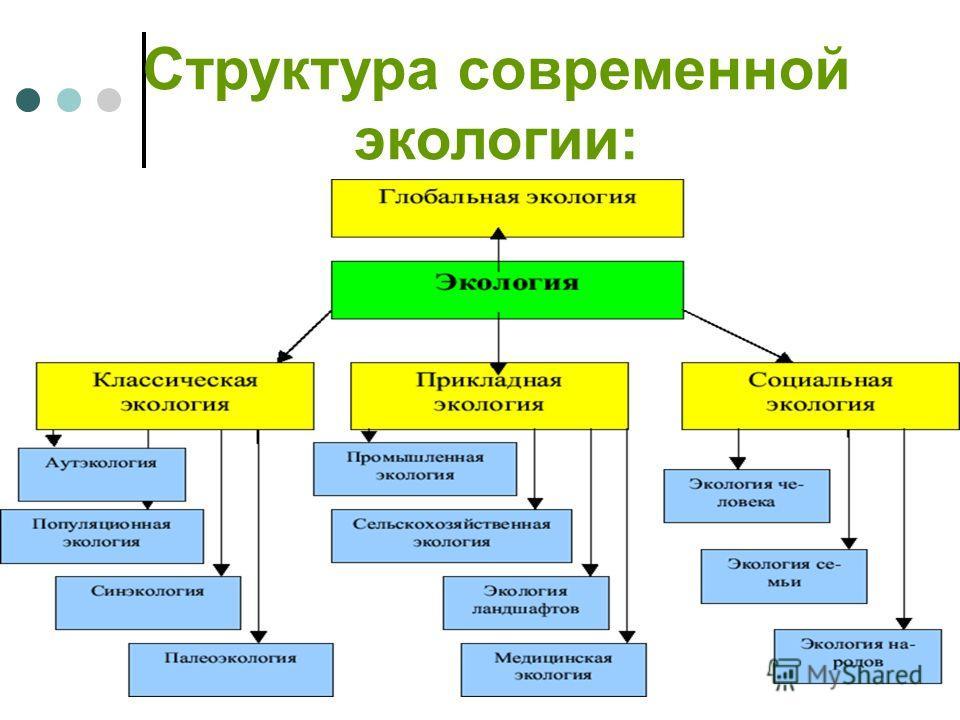 Структура современной экологии: