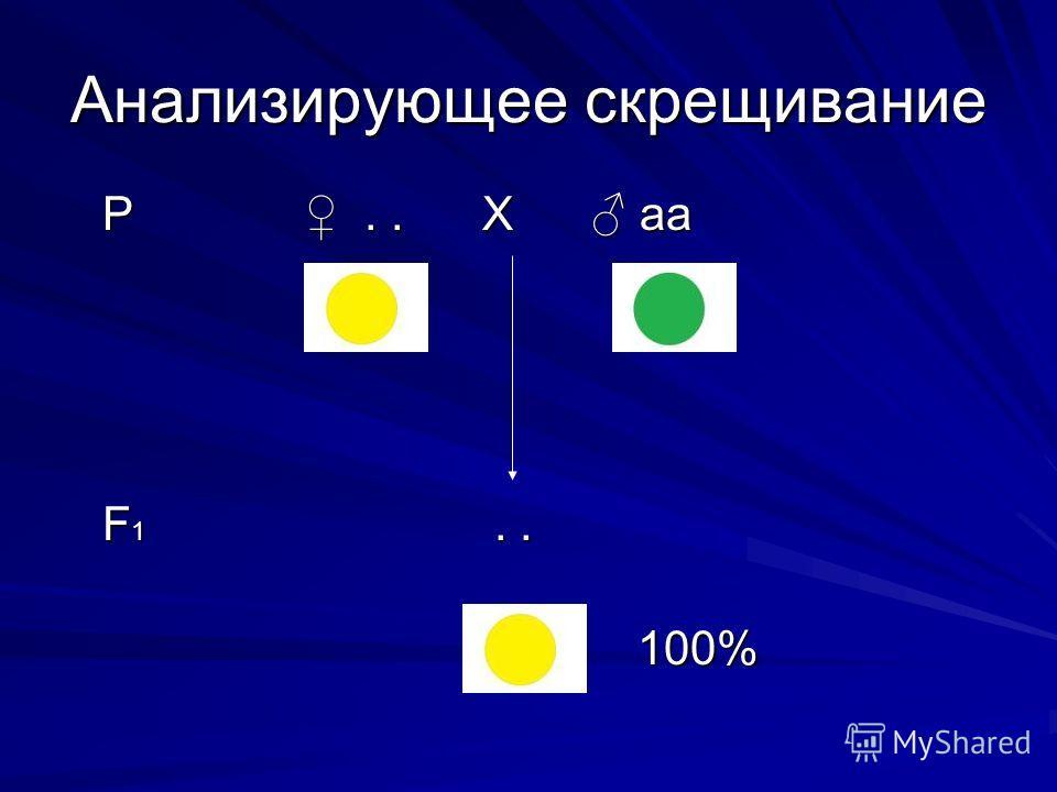 Анализирующее скрещивание Р.. Х аа Р.. Х аа F 1.. F 1.. 100% 100%