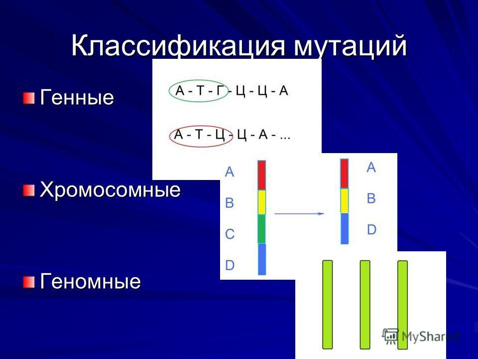 Классификация мутаций ГенныеХромосомныеГеномные