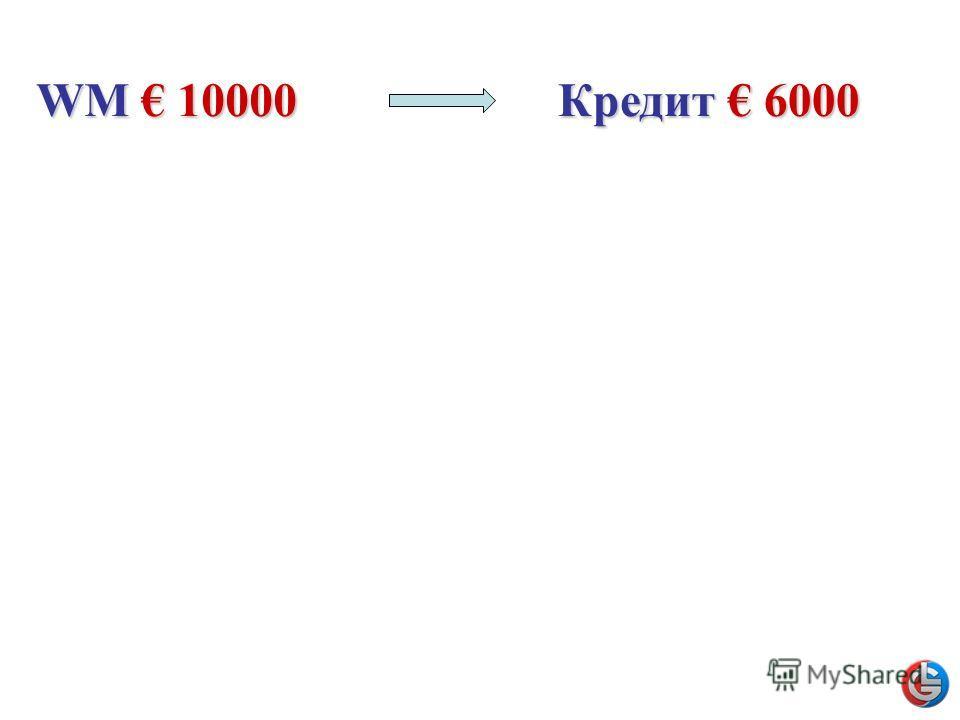 WM 10000 Кредит 6000