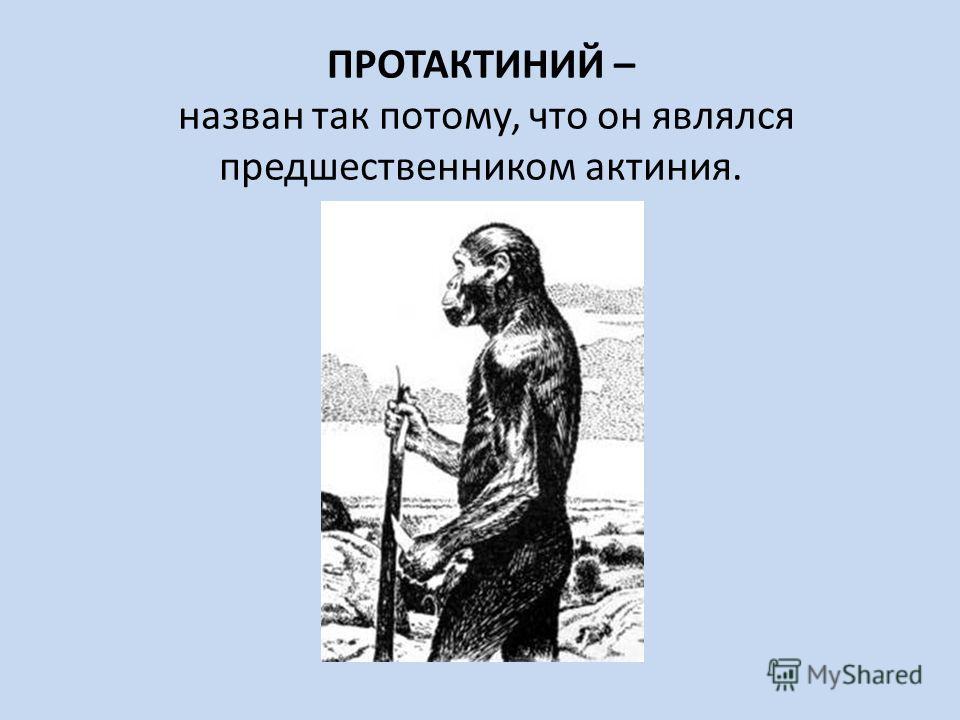 ПРОТАКТИНИЙ – назван так потому, что он являлся предшественником актиния.