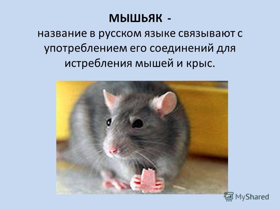 МЫШЬЯК - название в русском языке связывают с употреблением его соединений для истребления мышей и крыс.