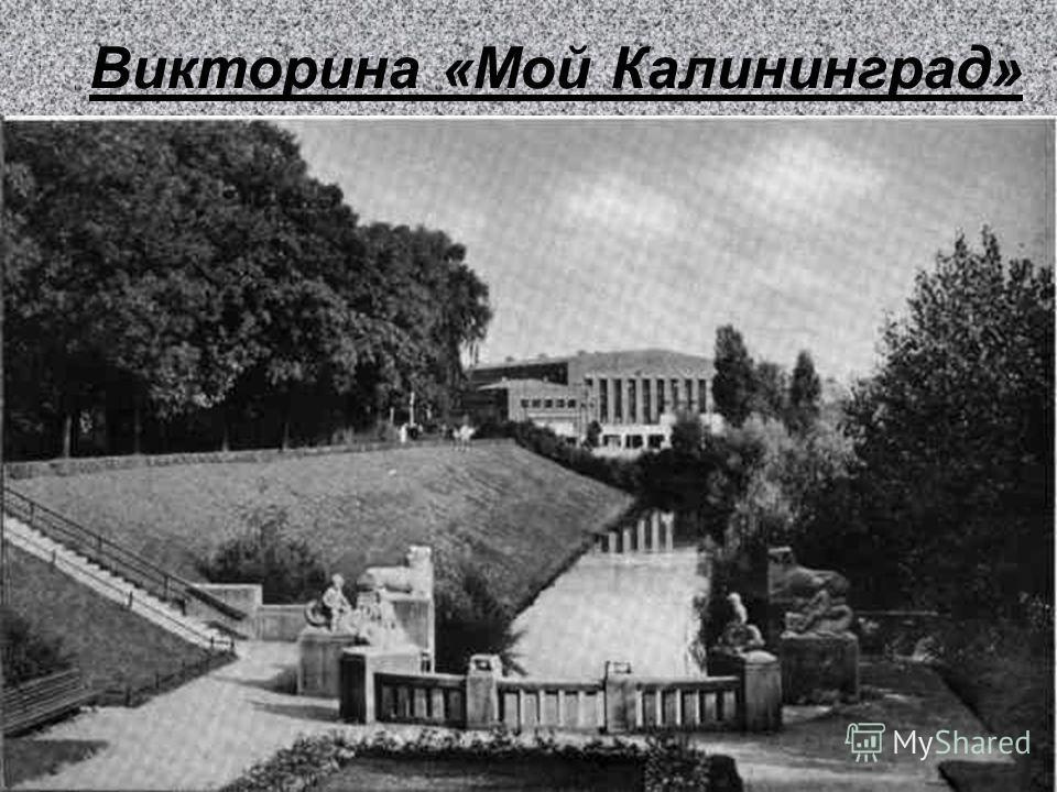 Викторина «Мой Калининград»