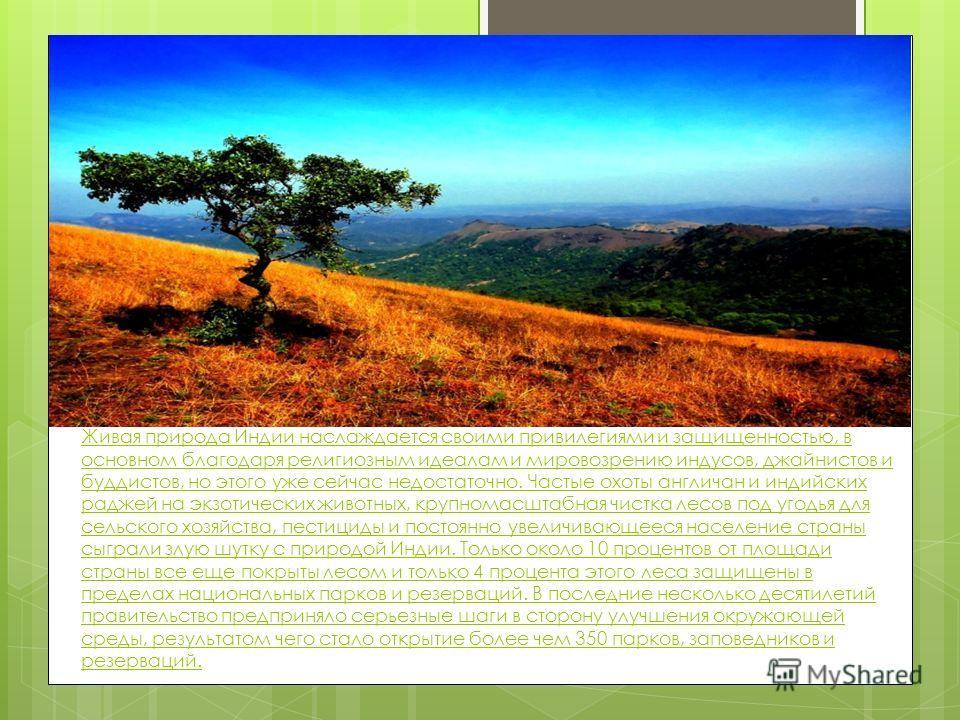 В Индии встречаются 7.6% всех земных млекопитающих, 12.6% птиц, 6.2% рептилий, 6.0% цветущих растений. 33% индийских растений энедемичны, то есть встречаются только в Индии!