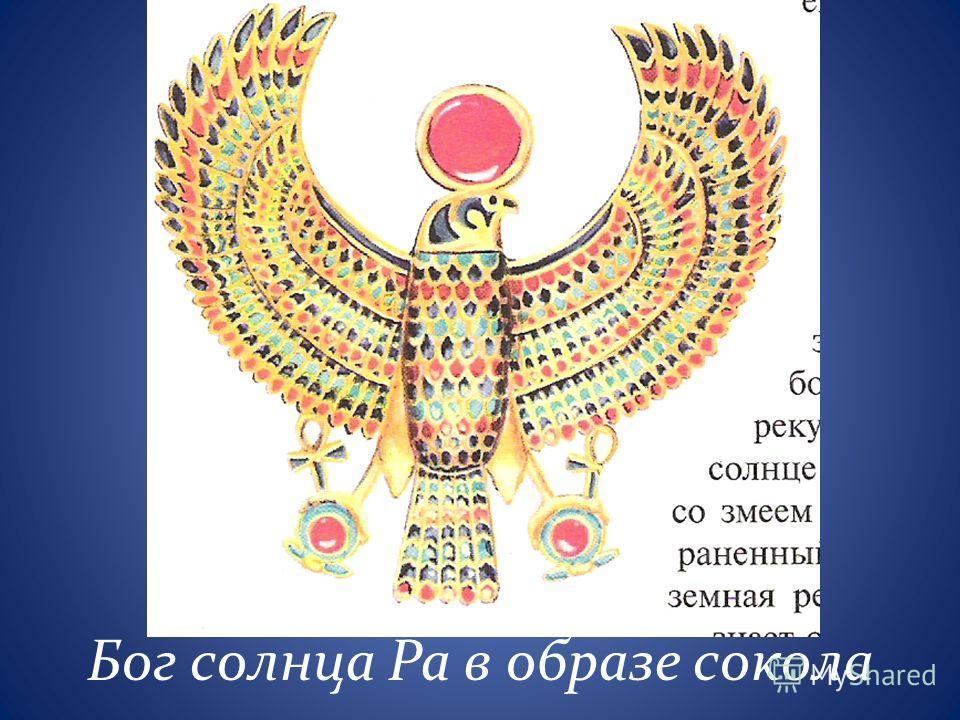 Бог солнца Ра в образе сокола