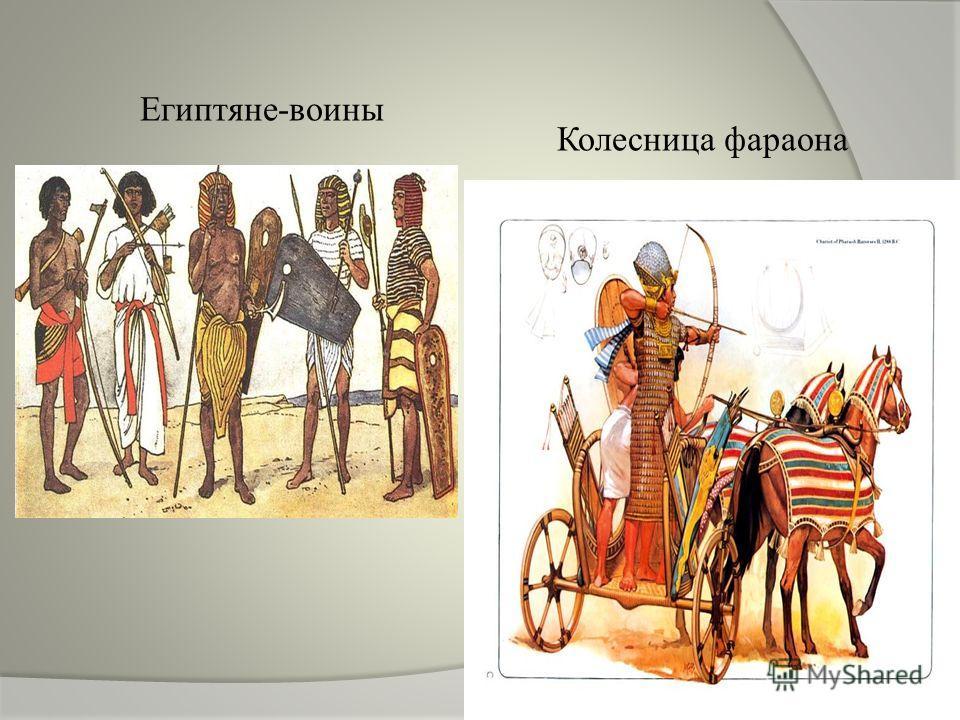 Египтяне-воины Колесница фараона