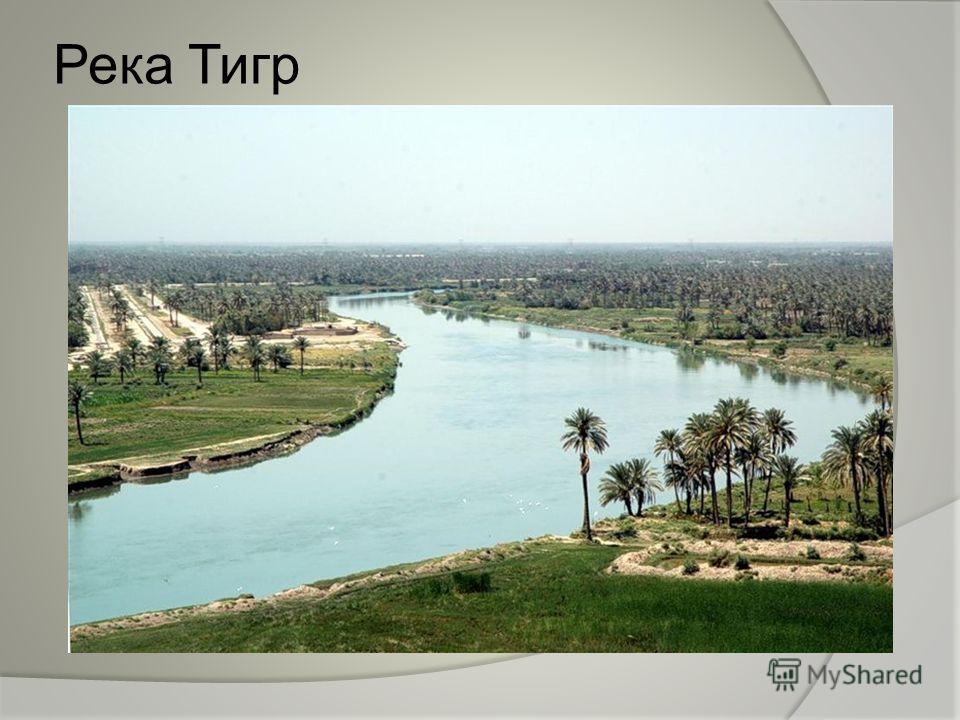 Река Тигр