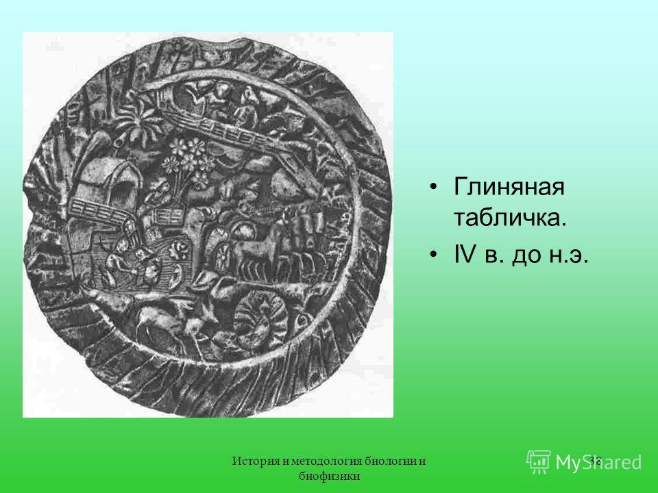 Глиняная табличка. IV в. до н.э. 38История и методология биологии и биофизики
